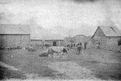 1890-00-00-KucksJC1845-Family-Farm