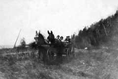 1898-00-00-BalitzFX1870-Mules