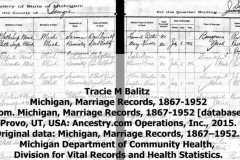 1916-07-03-ArnoldDS1890-BalitzTM1896-Michigan-Marriage-Record-crop