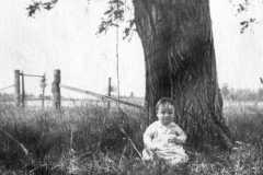 1918-00-00-ArnoldAE1917-by-Tree