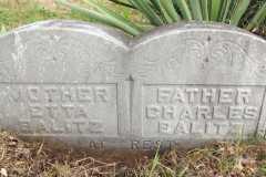 1918-11-05-WolfHX1833-BalitzCX18XX-Grave-Marker