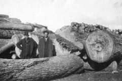 1919-04-01-ArnoldBD1879-ArnoldDS1890-Logging-Stormer-Benzie