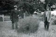 1927-01-01-circa-ArnoldDW1849-HarwoodJosephW-Asparagus