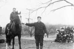 1940-00-00-ArnoldDS1890-horse