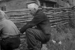1940-00-00-BalitzFX1870-chicks