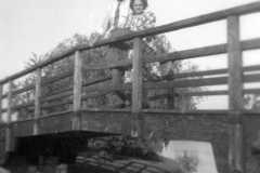 1941-00-00-ArnoldAE1917-BurringtonCM1919