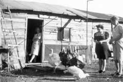 1941-00-00-BalitzTM1896BurringtonCM1919KucksMS1877