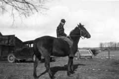 1943-04-01-ArnoldLD1929-with-horse