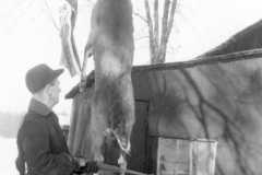 1947-00-00-ArnoldDS1890-big-buck-03
