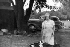 1954-00-00-BalitzTM1896-dogs-03