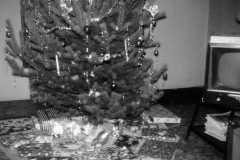 1957-12-25-presents-under-tree