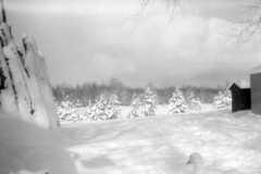 1964-01-01-Honor-Arnold-Homestead-Winter