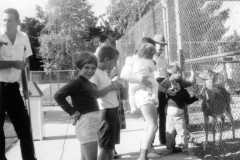 1966-07-04-Traverse-Zoo-ArnoldLD1929-ArnoldGJ1958-ArnoldDE1956-ArnoldJY1953-ArnoldTL1964
