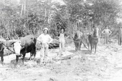 Farm Scene, circa 1910