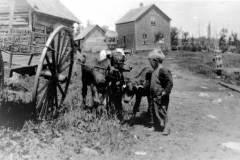 Honor Michigan Farm, circa 1917
