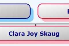 2011-09-11-HourglassChart-SkaugCJ2011